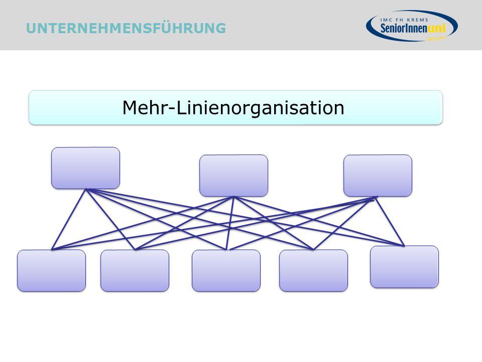Mehr-Linienorganisation