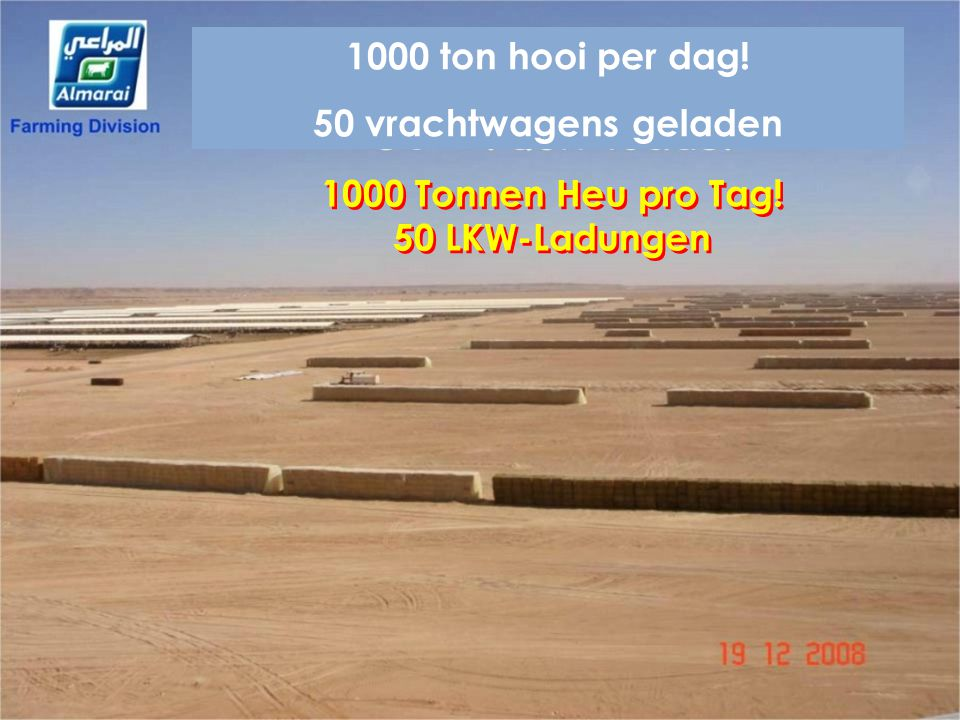 1000 Tonnen Heu pro Tag! 50 LKW-Ladungen