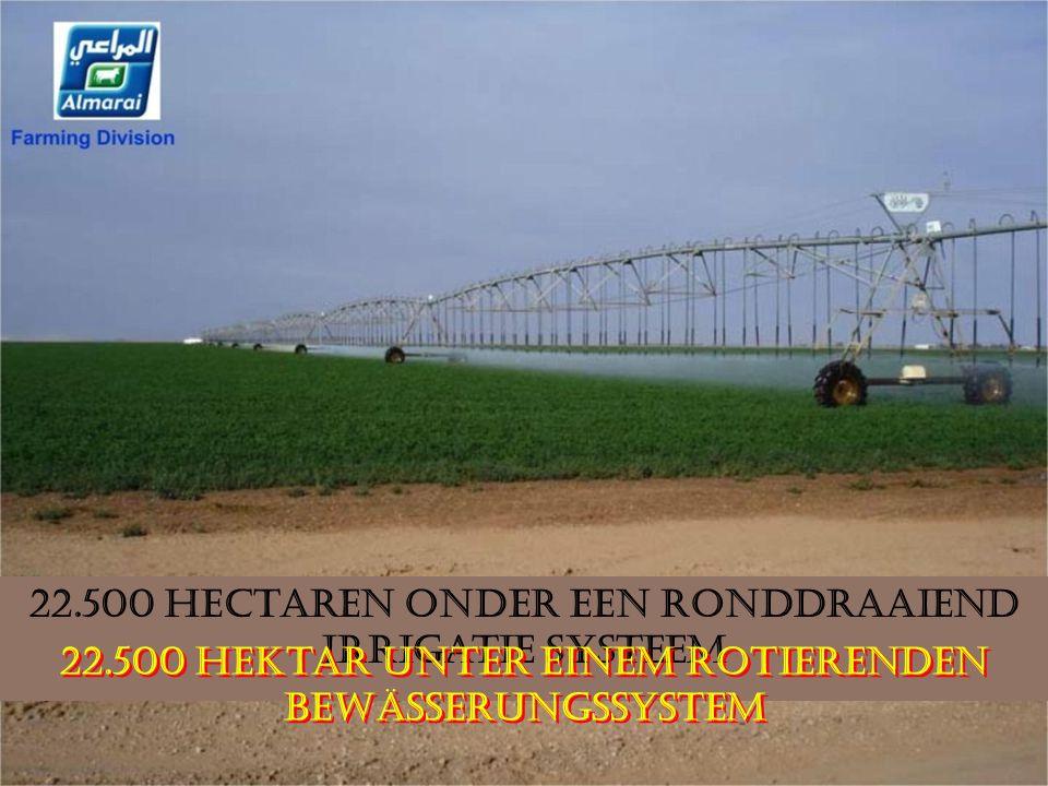 22.500 Hectaren onder een ronddraaiend irrigatie systeem