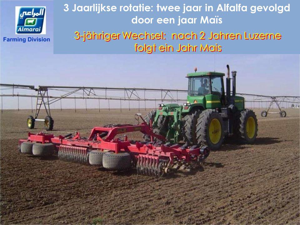 3 Jaarlijkse rotatie: twee jaar in Alfalfa gevolgd door een jaar Maïs