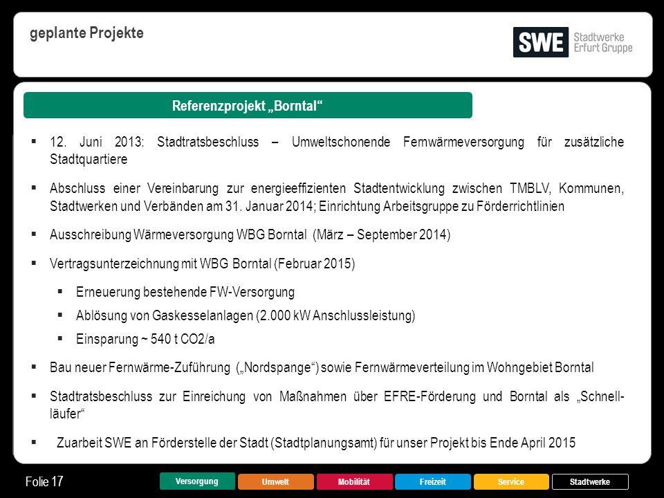 "Referenzprojekt ""Borntal"