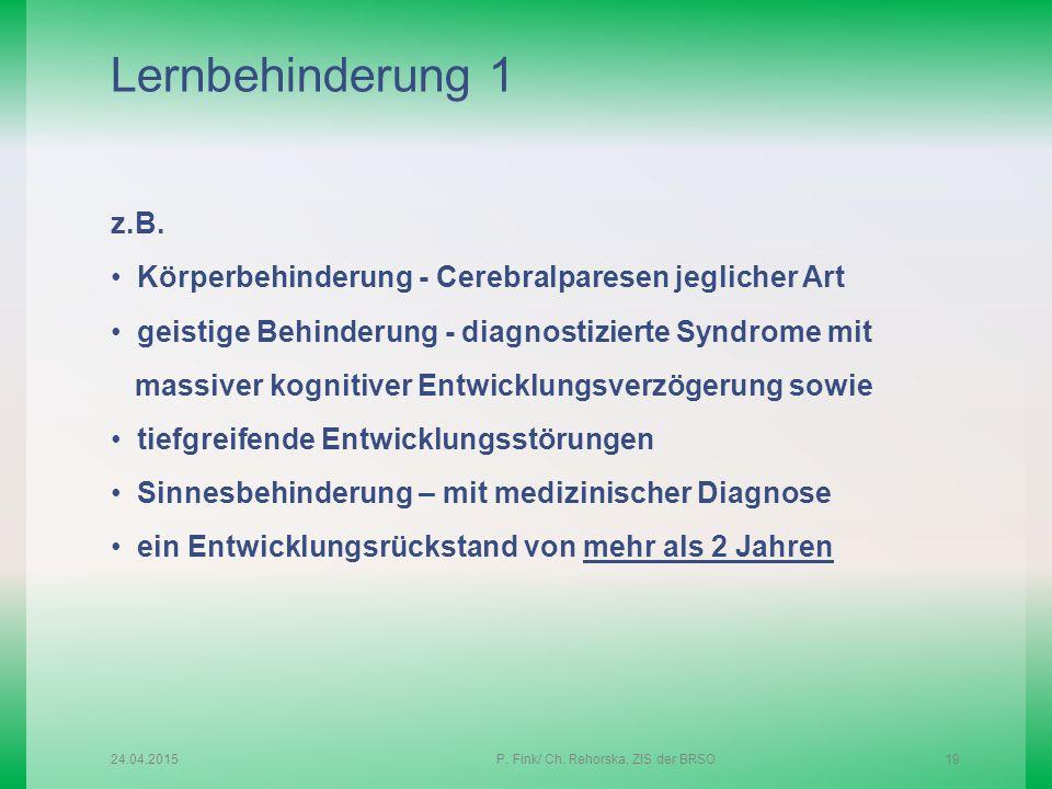 P. Fink/ Ch. Rehorska, ZIS der BRSO