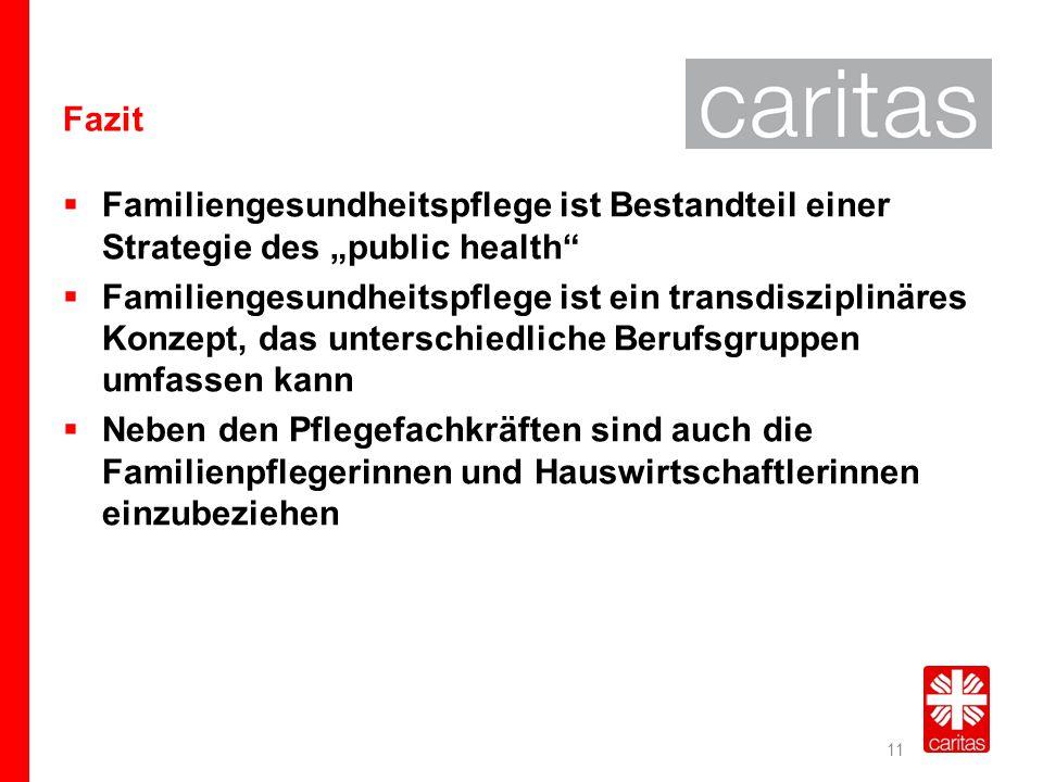 """Fazit Familiengesundheitspflege ist Bestandteil einer Strategie des """"public health"""