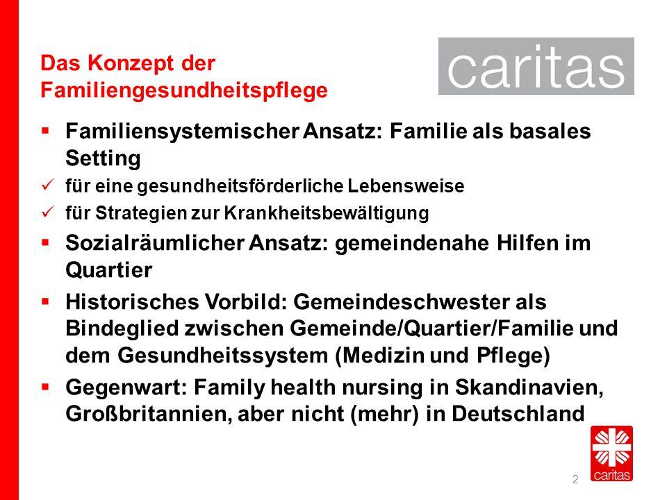 Das Konzept der Familiengesundheitspflege
