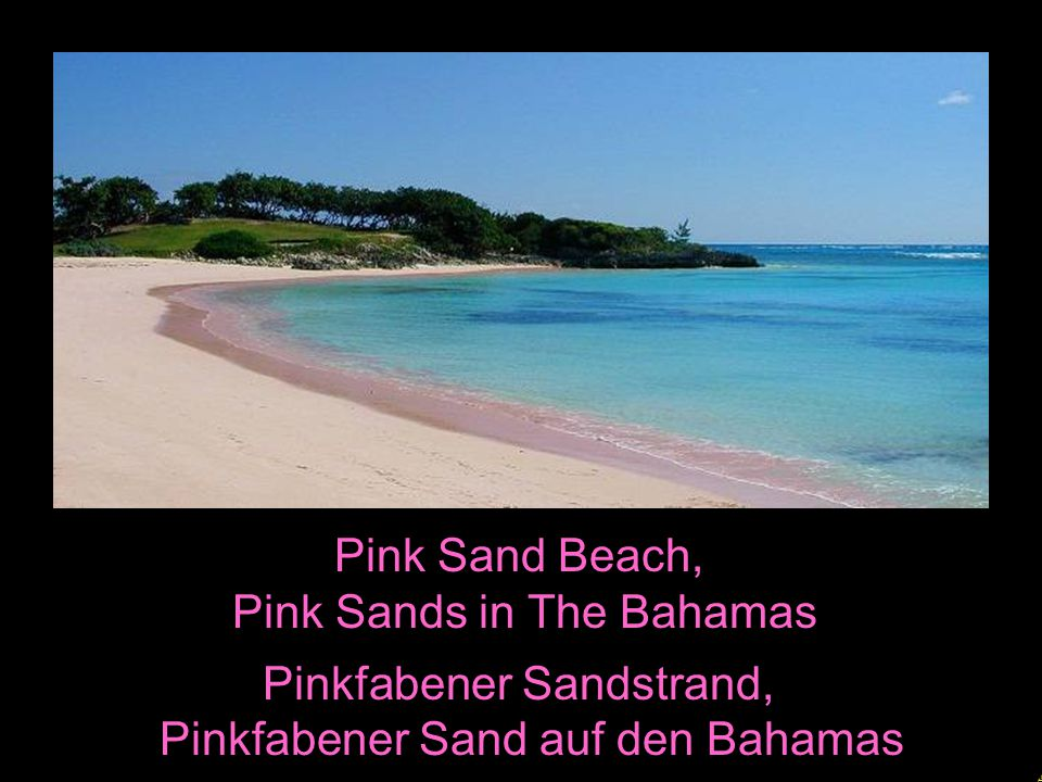 Pink Sands in The Bahamas