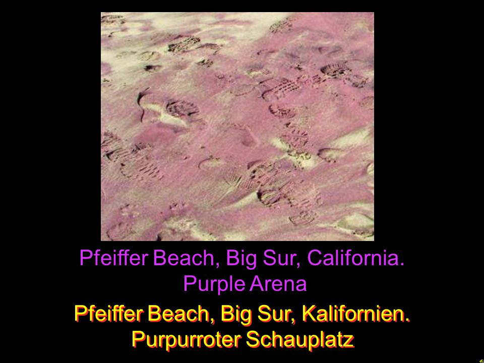 Pfeiffer Beach, Big Sur, California. Purple Arena