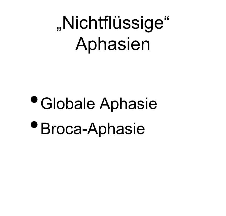 """""""Nichtflüssige Aphasien"""