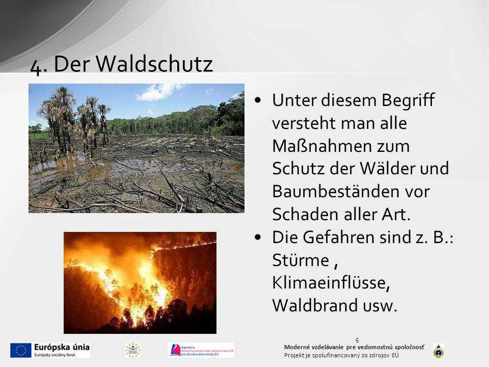 4. Der Waldschutz Unter diesem Begriff versteht man alle Maßnahmen zum Schutz der Wälder und Baumbeständen vor Schaden aller Art.