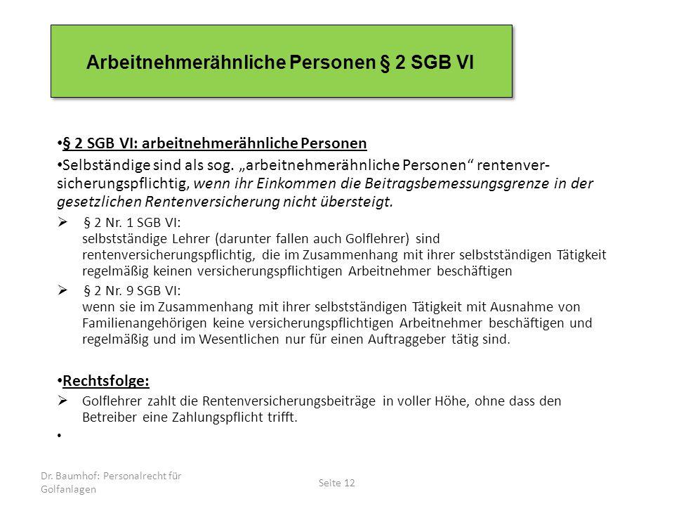Arbeitnehmerähnliche Personen § 2 SGB VI