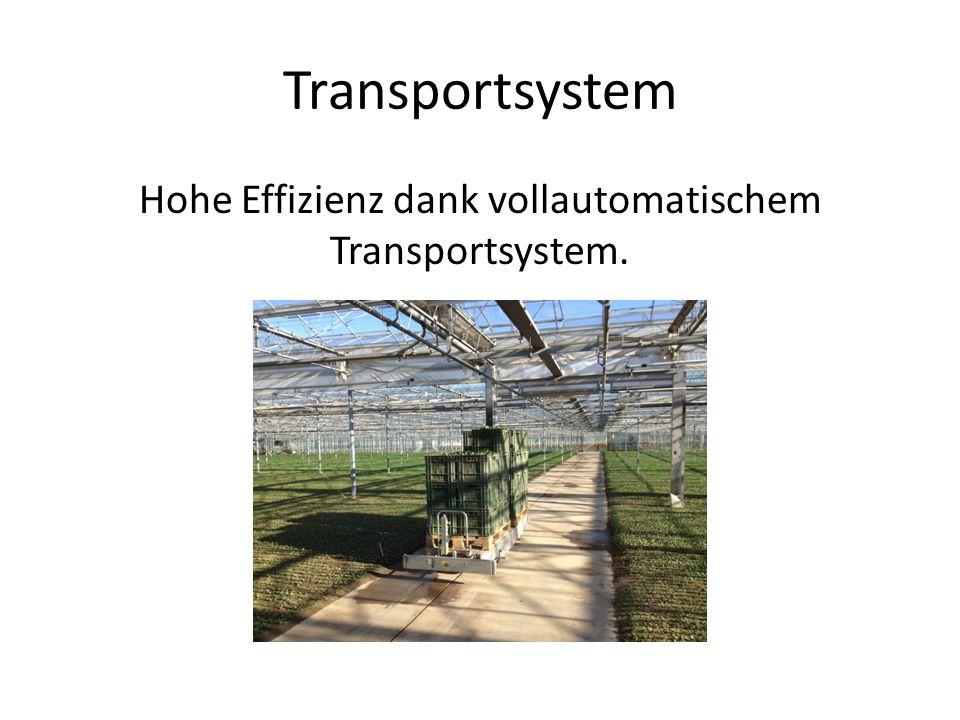 Hohe Effizienz dank vollautomatischem Transportsystem.