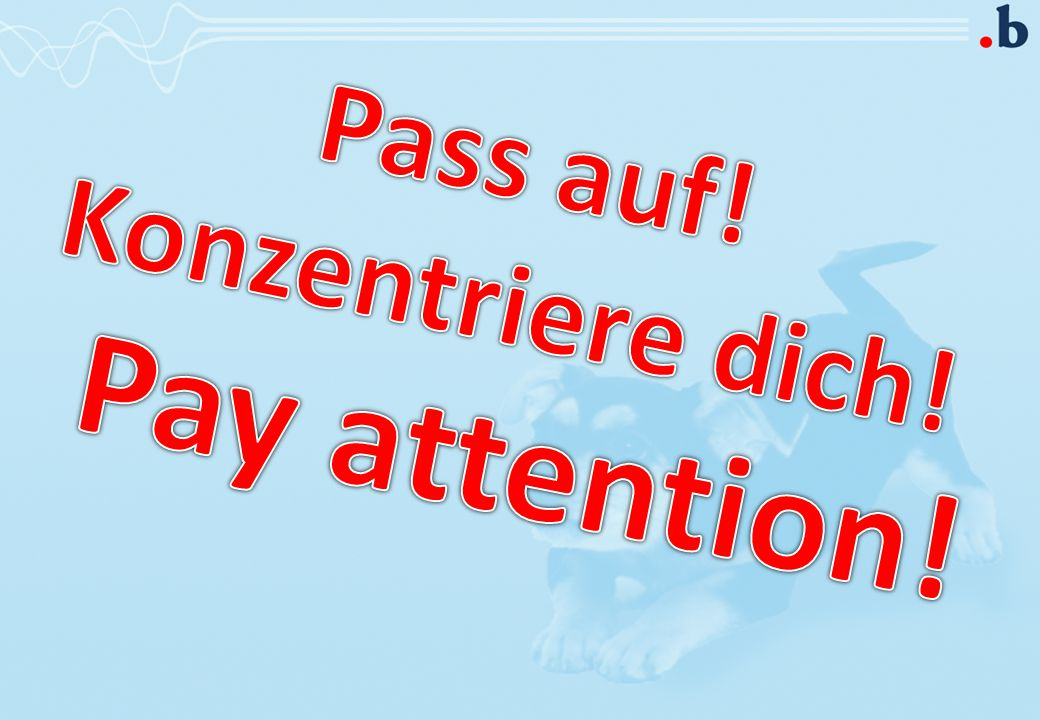 Pay attention! Pass auf! Konzentriere dich!