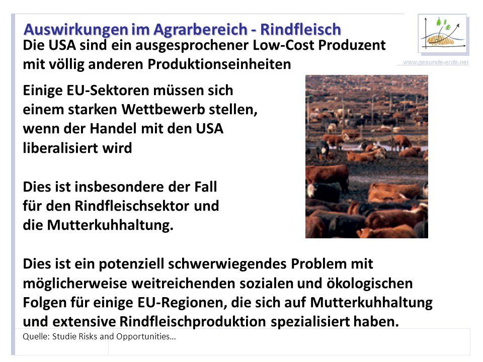 Auswirkungen im Agrarbereich - Rindfleisch