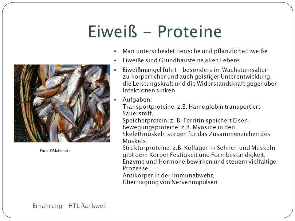 Eiweiß - Proteine Man unterscheidet tierische und pflanzliche Eiweiße