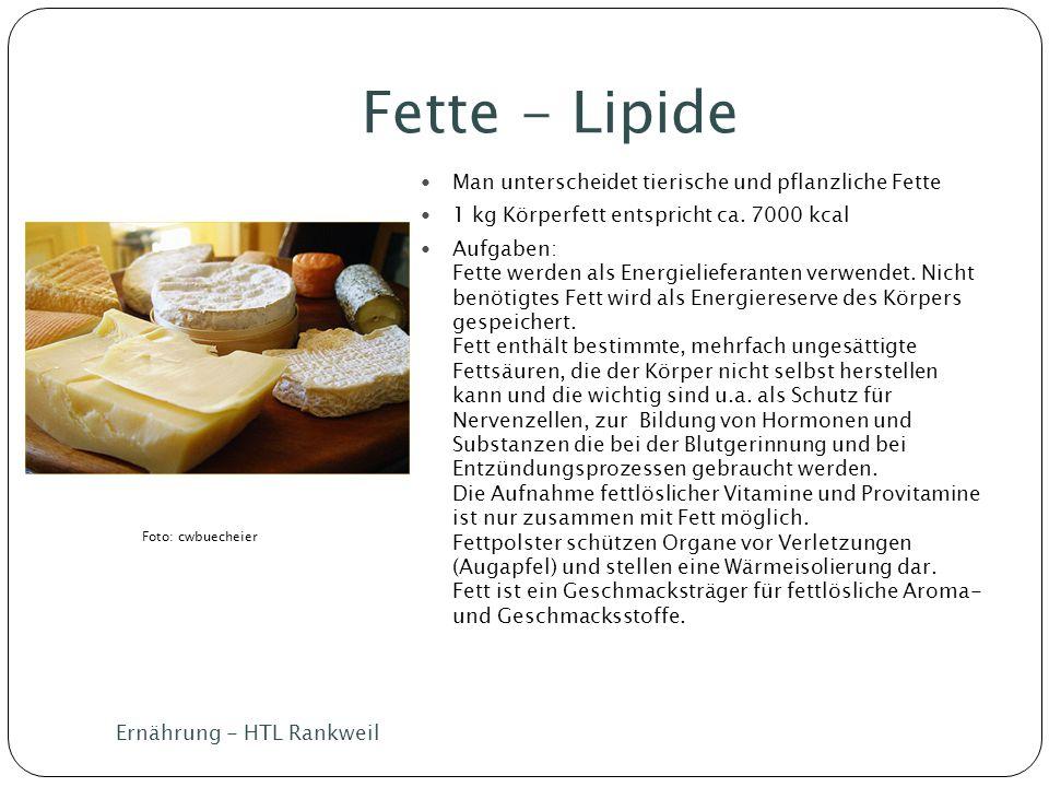 Fette - Lipide Man unterscheidet tierische und pflanzliche Fette