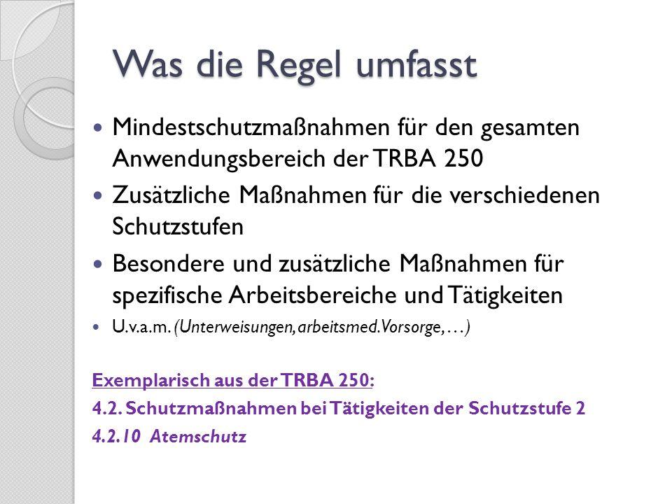 Was die Regel umfasst Mindestschutzmaßnahmen für den gesamten Anwendungsbereich der TRBA 250.