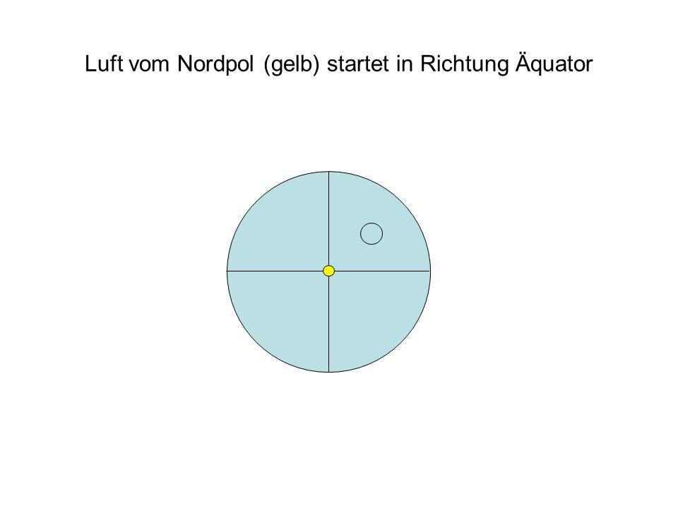 Luft vom Nordpol (gelb) startet in Richtung Äquator