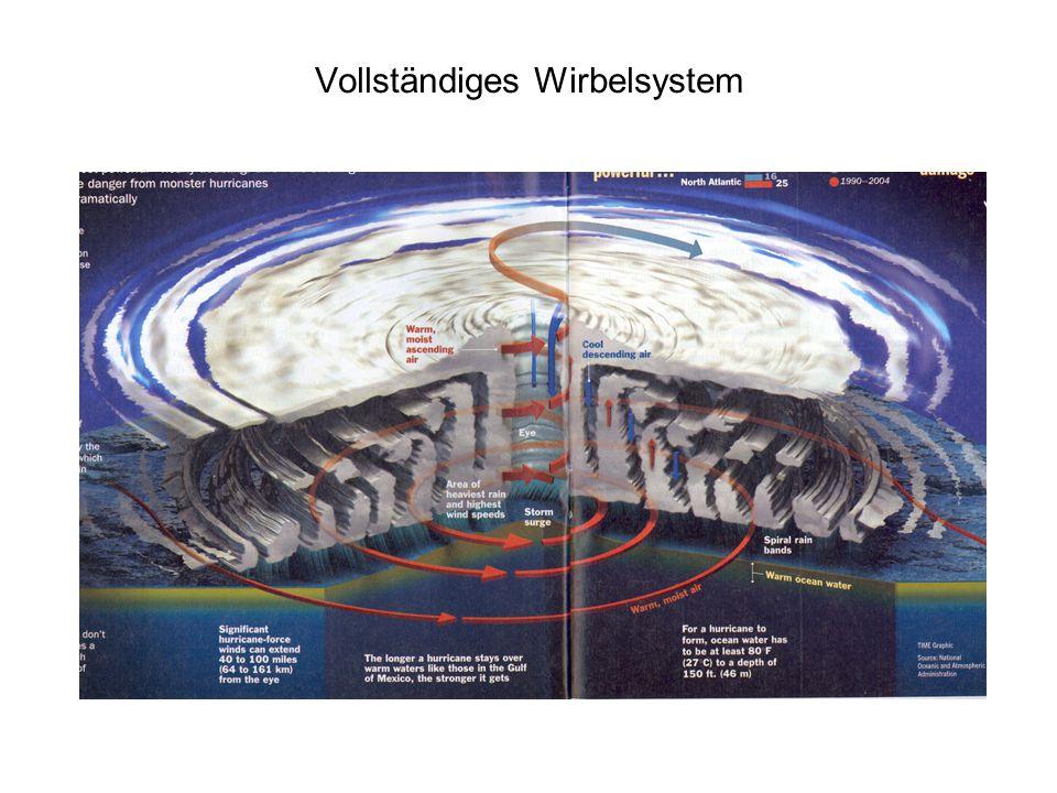 Vollständiges Wirbelsystem