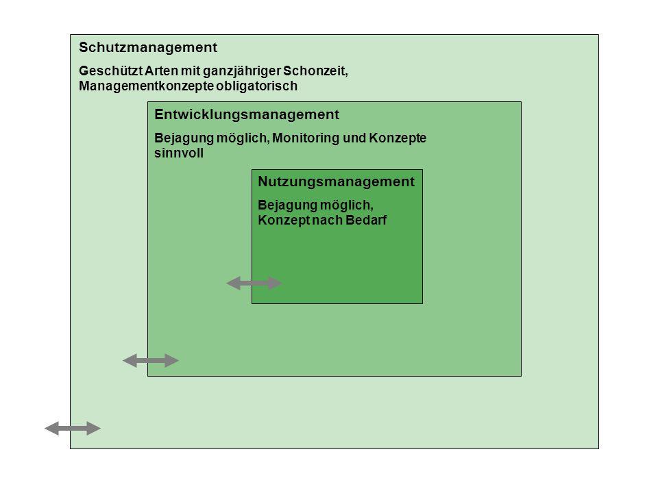 Entwicklungsmanagement