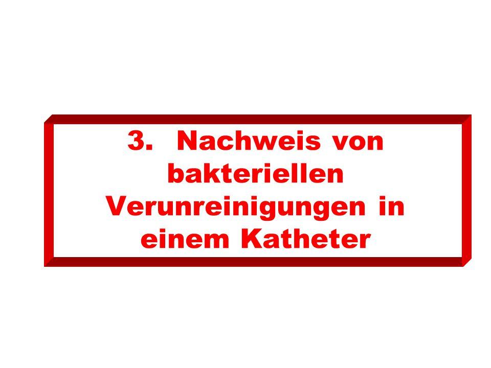 3. Nachweis von bakteriellen Verunreinigungen in einem Katheter