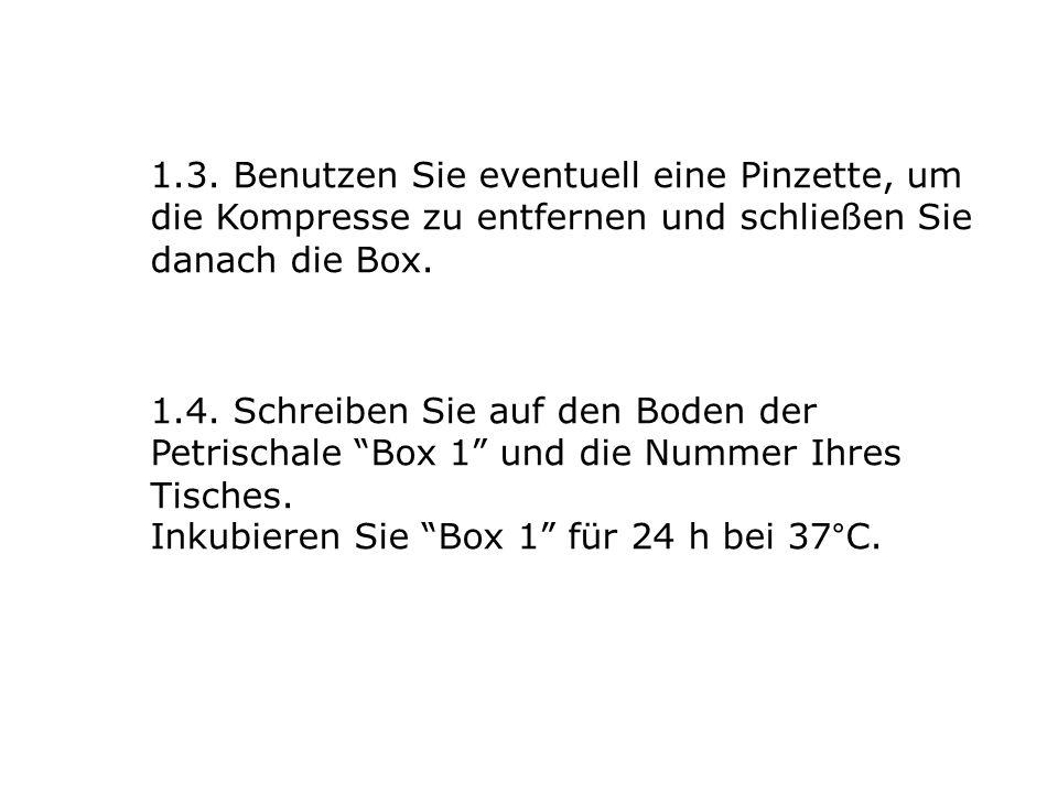 1.3. Benutzen Sie eventuell eine Pinzette, um die Kompresse zu entfernen und schließen Sie danach die Box.