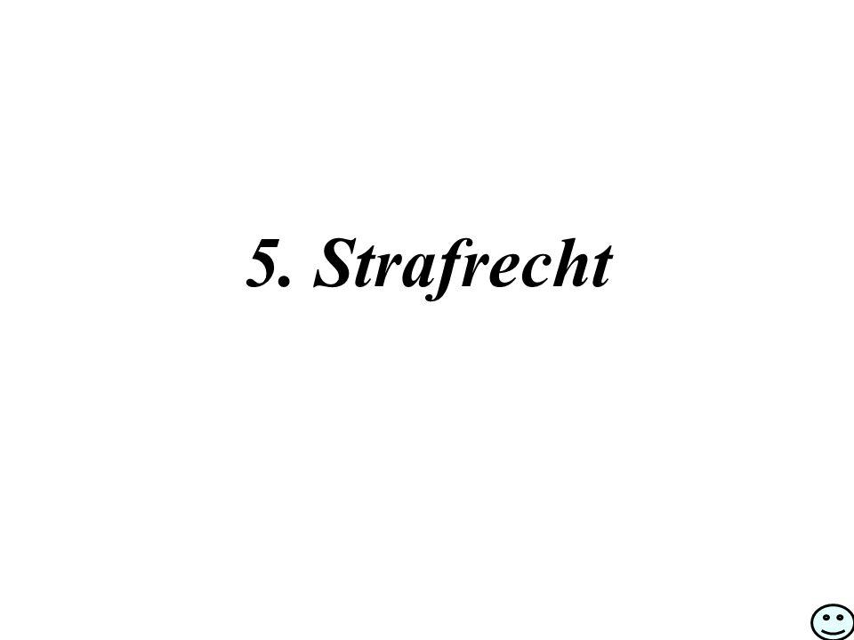 5. Strafrecht