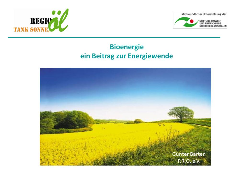 Bioenergie ein Beitrag zur Energiewende