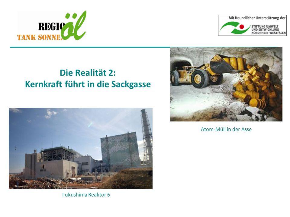 Die Realität 2: Kernkraft führt in die Sackgasse