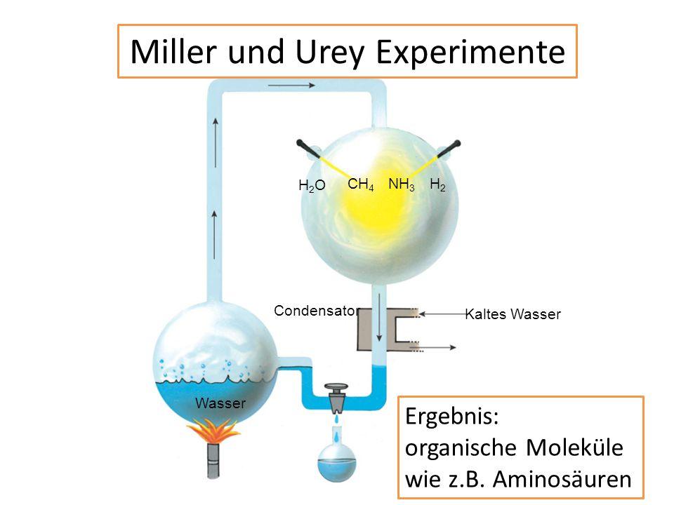 Miller und Urey Experimente