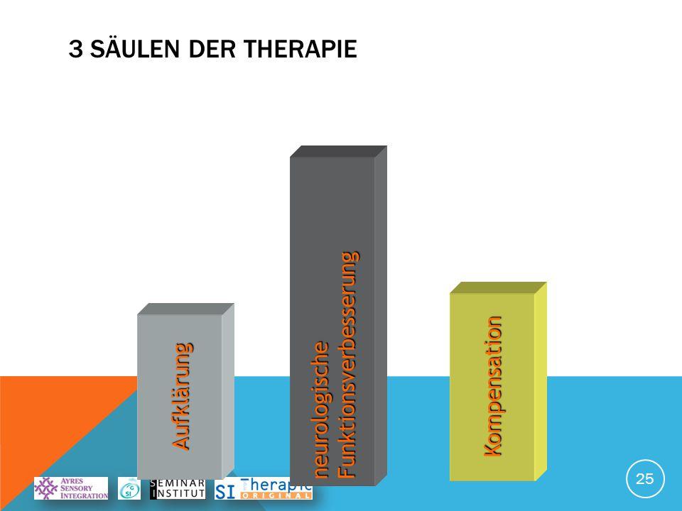 3 Säulen der Therapie Funktionsverbesserung neurologische Kompensation