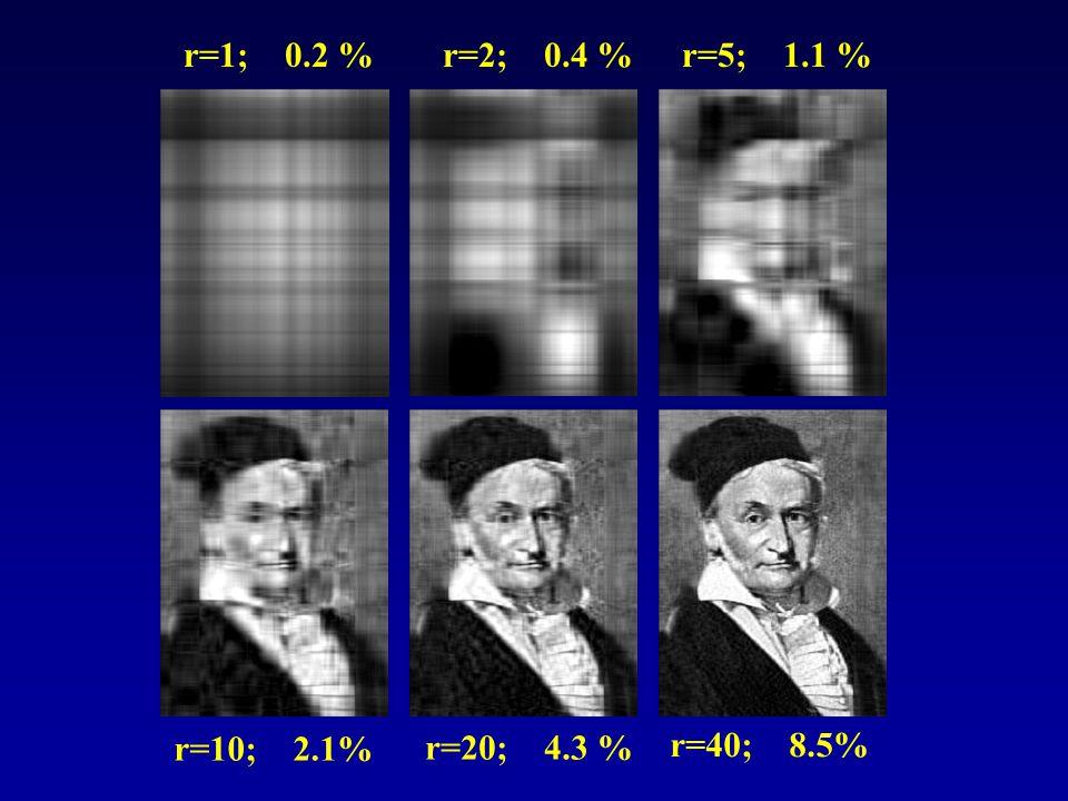 r=1; 0.2 % r=2; 0.4 % r=5; 1.1 % r=10; 2.1% r=20; 4.3 % r=40; 8.5%