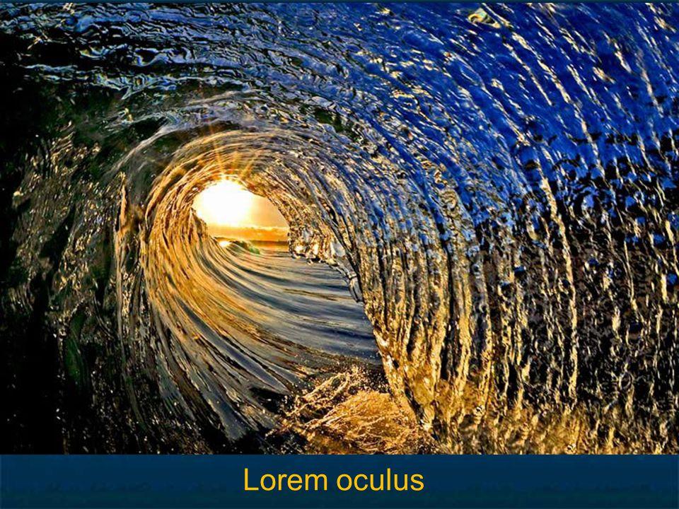 Lorem oculus