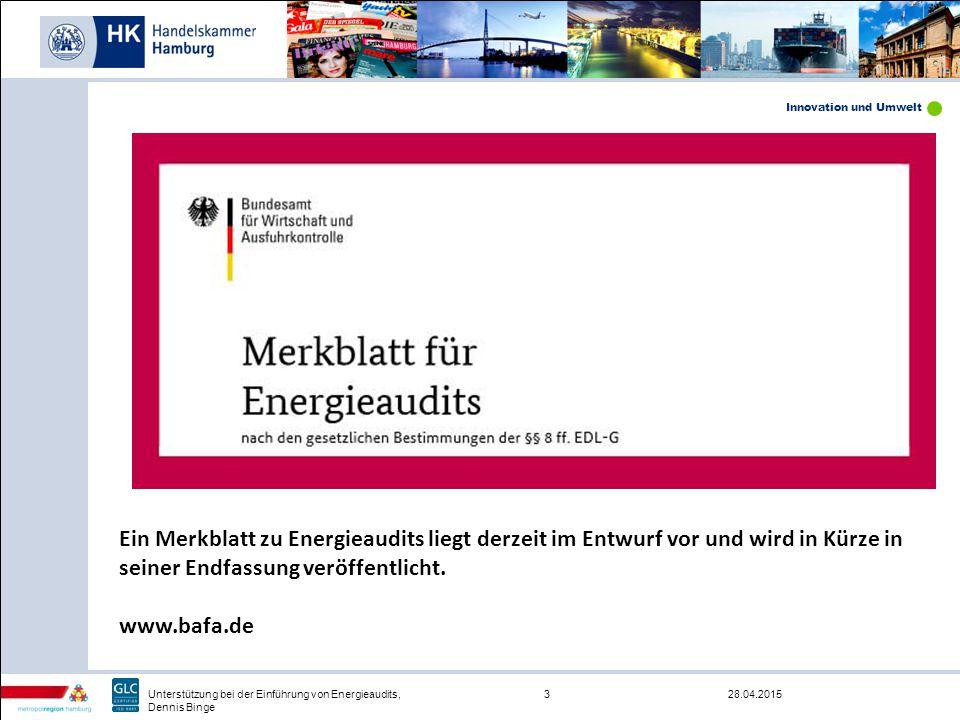 Ein Merkblatt zu Energieaudits liegt derzeit im Entwurf vor und wird in Kürze in seiner Endfassung veröffentlicht.