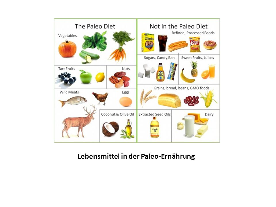 Lebensmittel in der Paleo-Ernährung