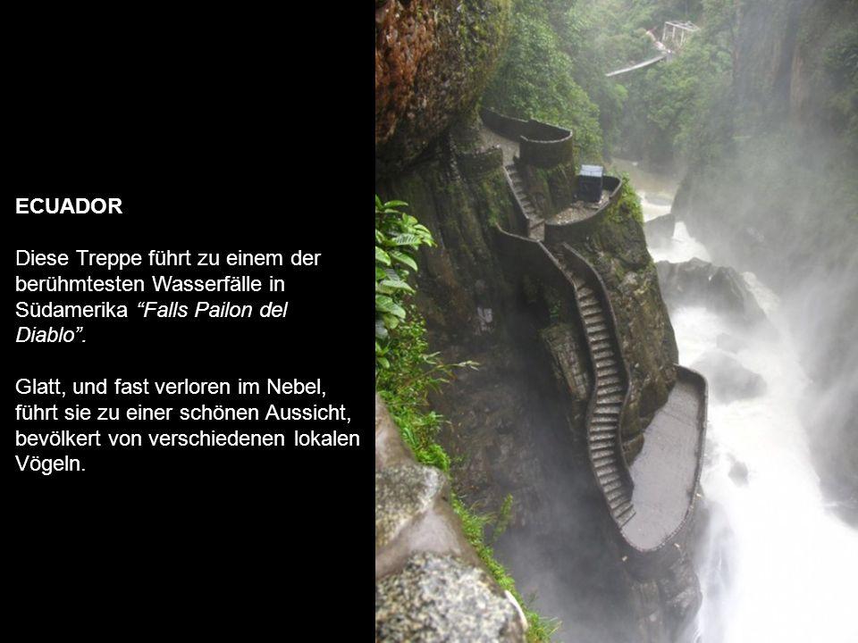 ECUADOR Diese Treppe führt zu einem der berühmtesten Wasserfälle in Südamerika Falls Pailon del Diablo .