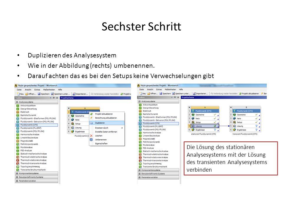 Sechster Schritt Duplizieren des Analysesystem