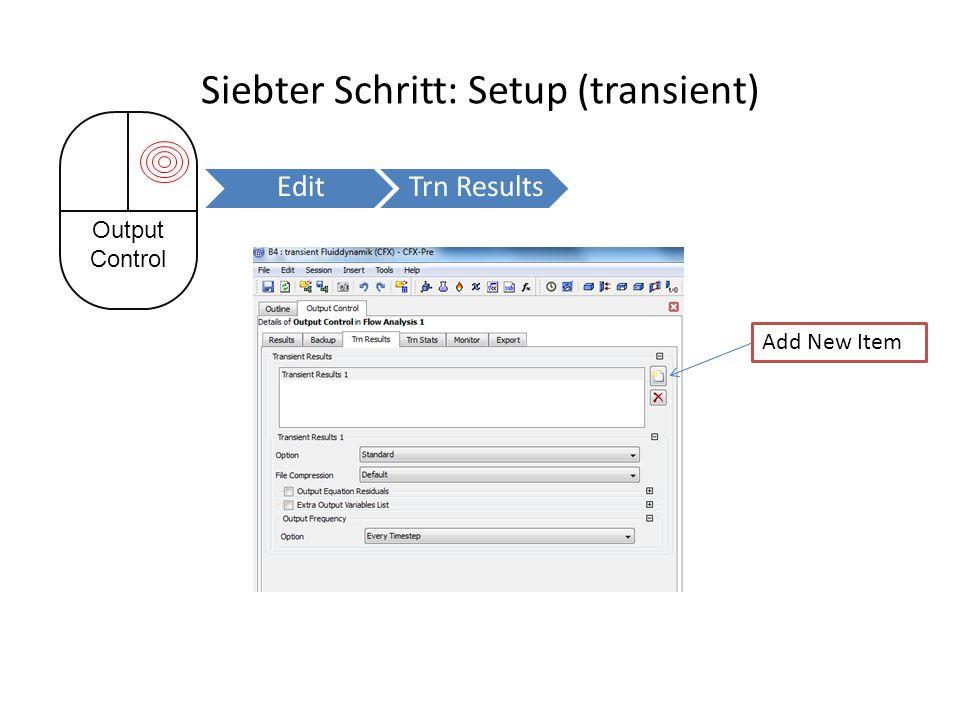 Siebter Schritt: Setup (transient)