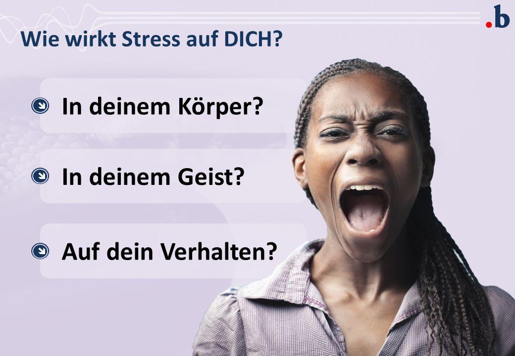 Wie wirkt Stress auf DICH