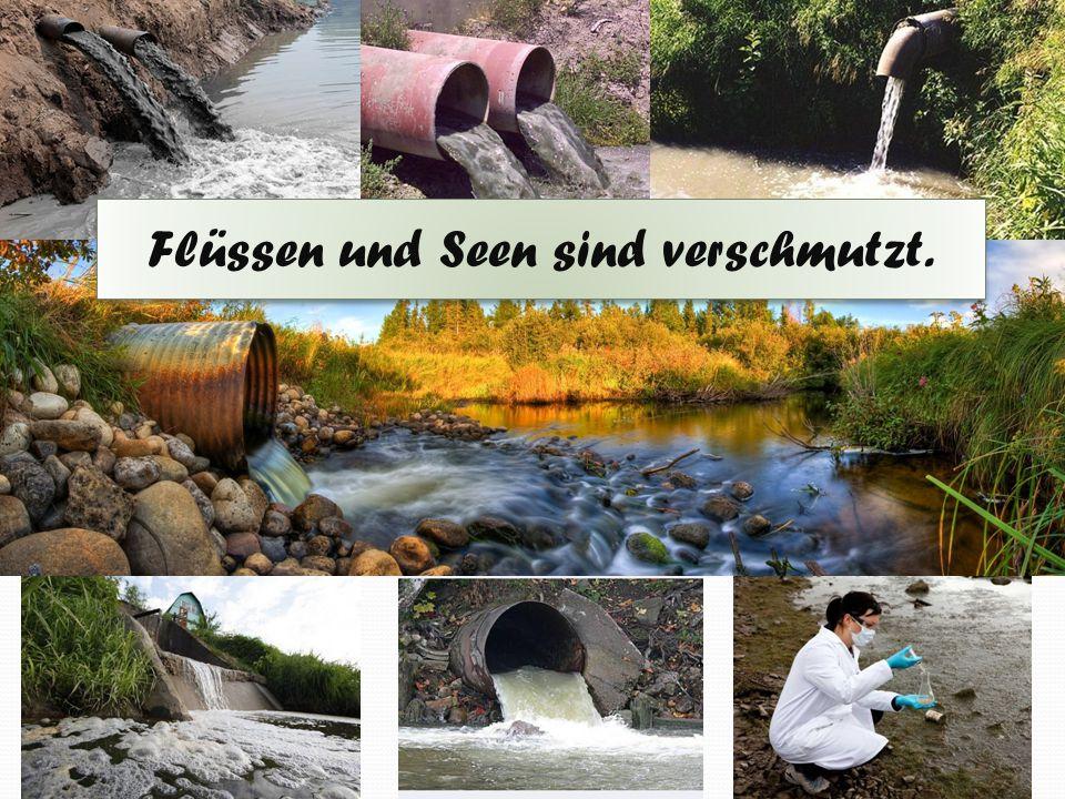 Flüssen und Seen sind verschmutzt.