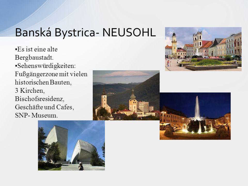 Banská Bystrica- NEUSOHL