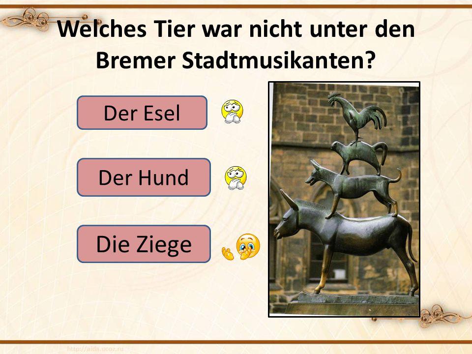 Welches Tier war nicht unter den Bremer Stadtmusikanten