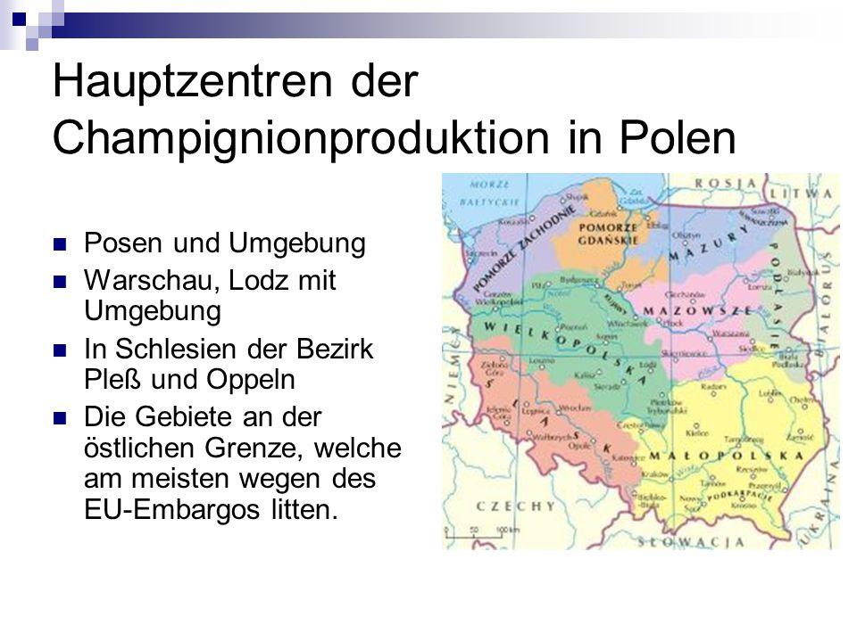 Hauptzentren der Champignionproduktion in Polen