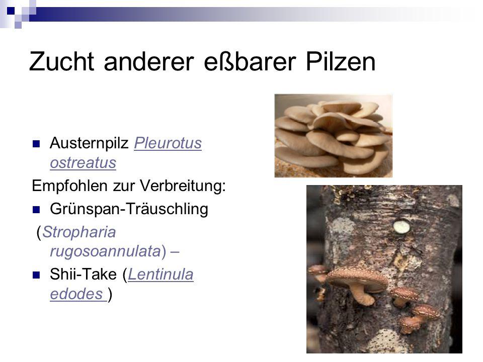 Zucht anderer eßbarer Pilzen