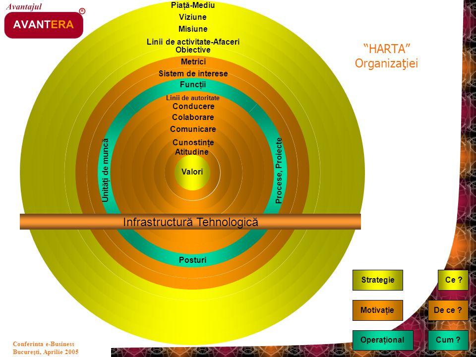 Linii de activitate-Afaceri