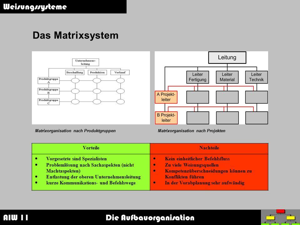 Das Matrixsystem Weisungssysteme Vorteile Nachteile