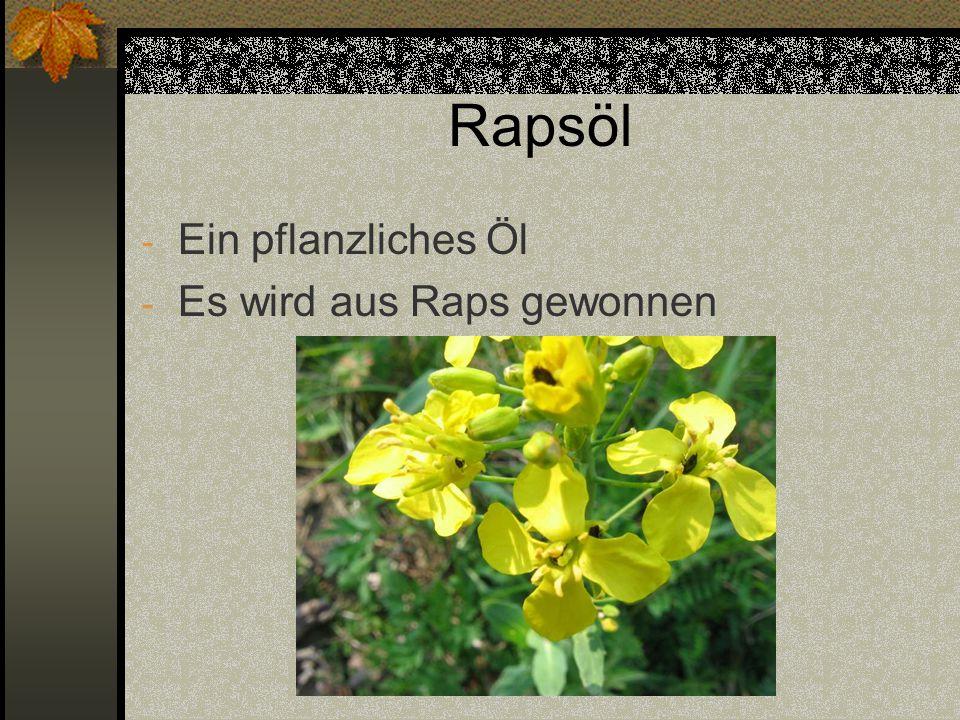 Rapsöl Ein pflanzliches Öl Es wird aus Raps gewonnen