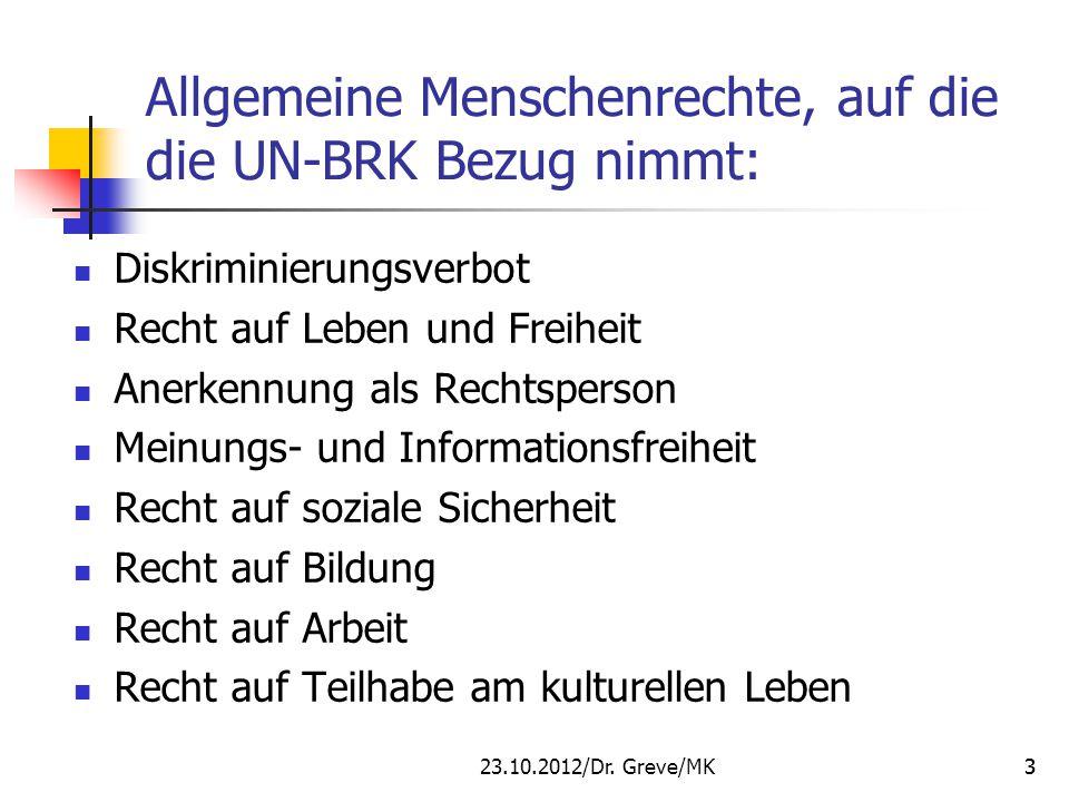 Allgemeine Menschenrechte, auf die die UN-BRK Bezug nimmt: