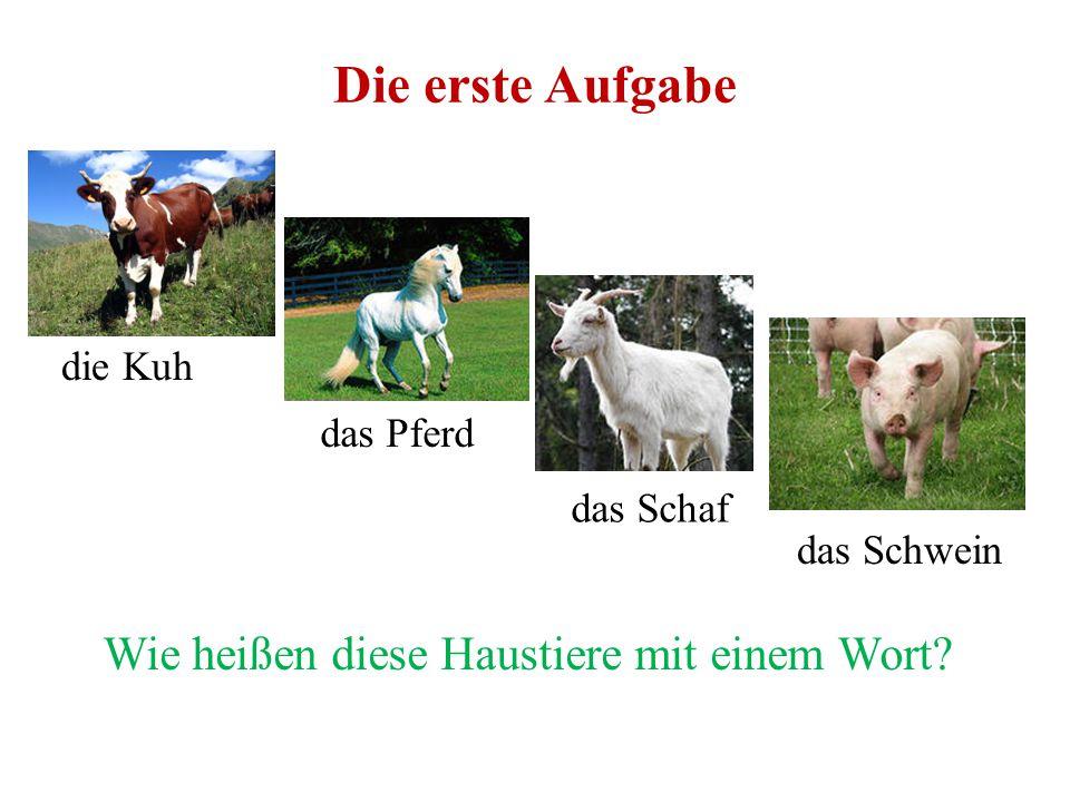 Die erste Aufgabe Wie heißen diese Haustiere mit einem Wort die Kuh