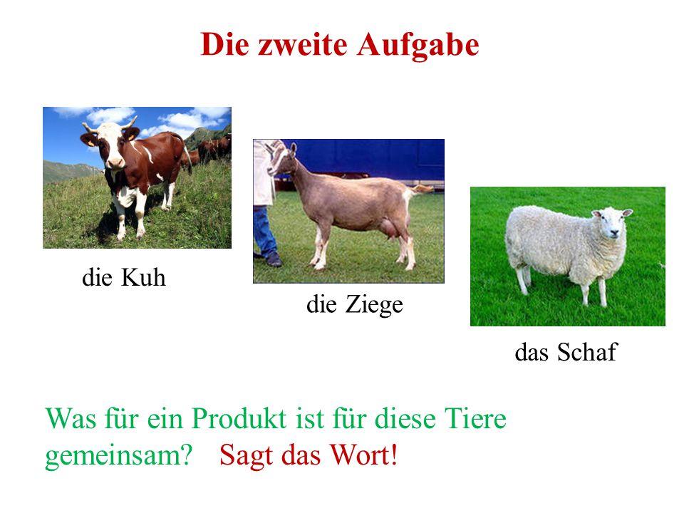 Die zweite Aufgabe die Kuh. die Ziege. das Schaf.