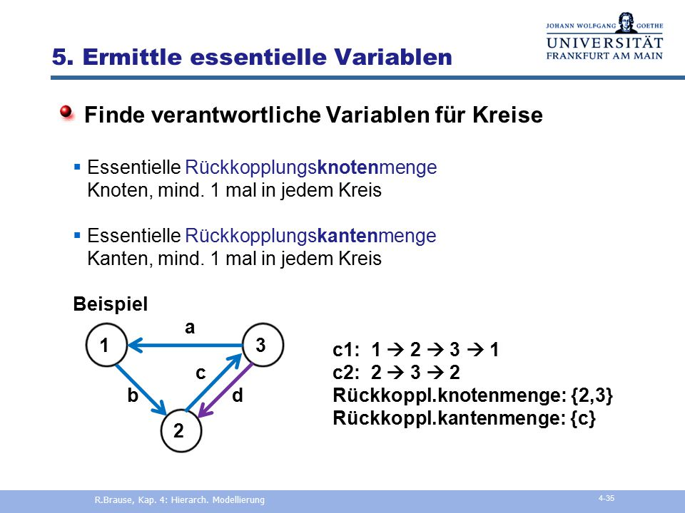 5. Ermittle essentielle Variablen