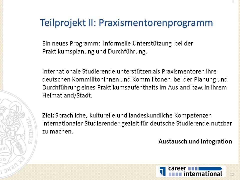 Teilprojekt II: Praxismentorenprogramm